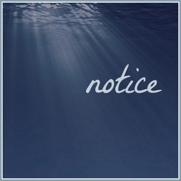 FMF - Notice
