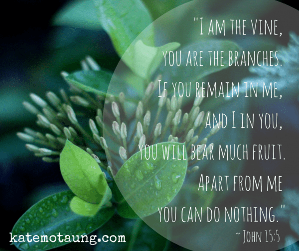_I am the vine, you are the branches. If
